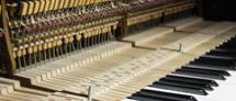 """""""פסנתרני המחר"""": קונצרט זוכי התחרות ע""""ש אריאנה כץ"""