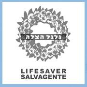 Lifesaver : the Israeli Pavilion, the 10th International Exhibition of Architecture, the Venice Biennial