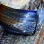 העבודות מהרהרות על האוטונומיה הציורית